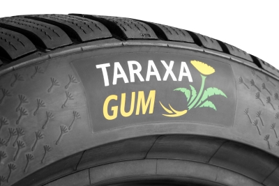 Put the plant to the road: Continental trials first tyres with dandelion rubber tread