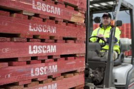 Loscam marks 70 years in business